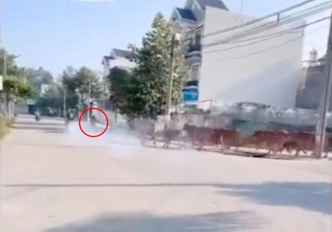 Clip: 'Quái xế' thích thể hiện, nẹt pô ầm ĩ trên đường liền bị cả đàn bò truy đuổi chạy bán sống, bán chết-1