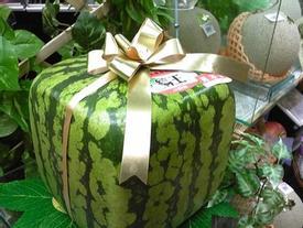 Dưa hấu vuông và những cách tạo hình trái cây độc đáo