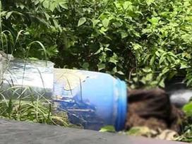 Giáp mặt với 4 nghi can giết người phi tang xác ở Bình Dương