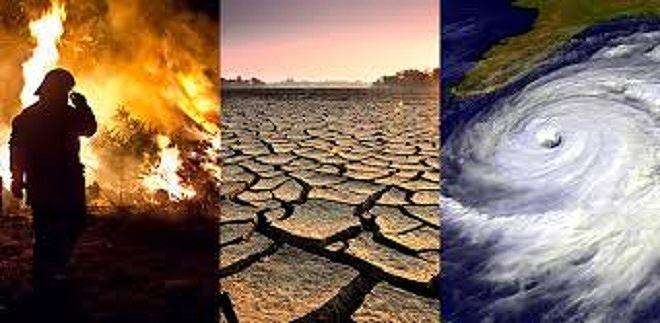 2019 sẽ là năm nóng nhất trong lịch sử nhân loại-2