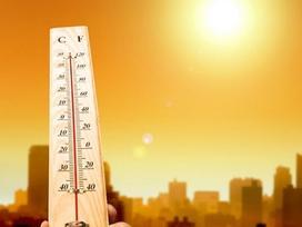 2019 sẽ là năm nóng nhất trong lịch sử nhân loại