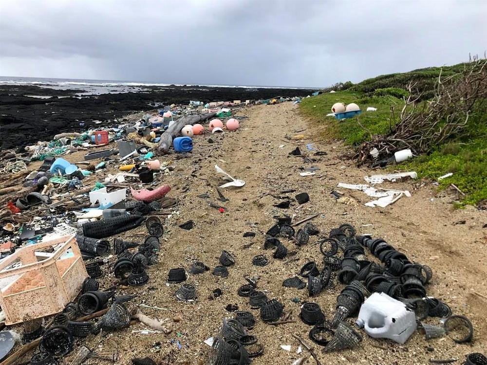 Thiên đường biển Hawaii ngập rác, nhà cao tầng mọc lên như nấm-7