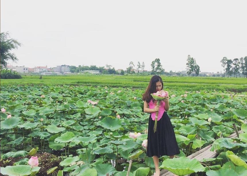 5 địa điểm chụp sen tuyệt đẹp quanh Hà Nội mùa hè này-7