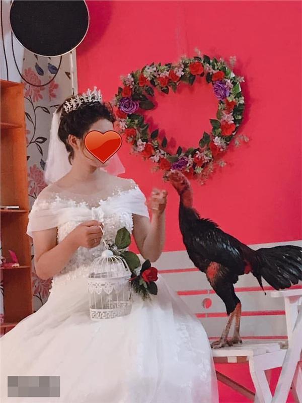 Cặp đôi mang gà đi chụp ảnh cưới, độc đẹp chưa thấy đâu, chỉ thấy chủ studio khóc thét vì mùi lạ-2