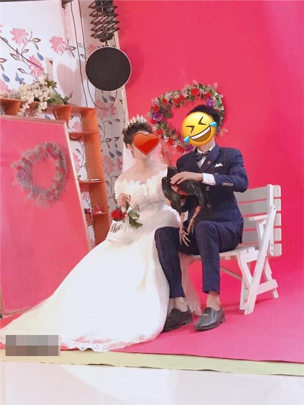 Cặp đôi mang gà đi chụp ảnh cưới, độc đẹp chưa thấy đâu, chỉ thấy chủ studio khóc thét vì mùi lạ-3
