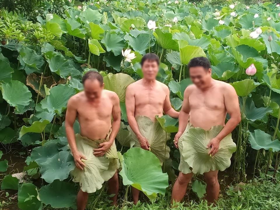 Dùng lá sen che vùng nhạy cảm khi chụp ảnh, 3 người đàn ông trung niên khiến dân tình tò mò: Cởi hay không cởi nói một lời-2