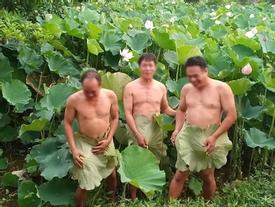 Dùng lá sen che vùng nhạy cảm khi chụp ảnh, 3 người đàn ông trung niên khiến dân tình tò mò: 'Cởi hay không cởi nói một lời'