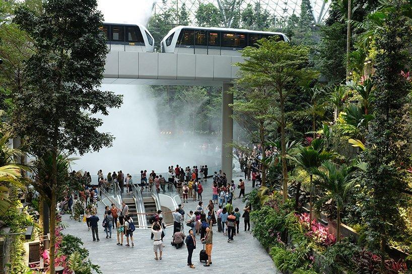 Quá đẹp và hoành tráng, sân bay Singapore khiến Hoàng tử sơn ca Quang Vinh phải thốt lên kinh ngạc-14