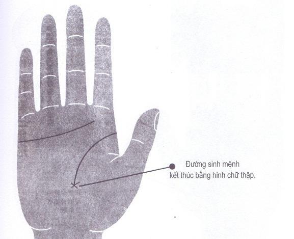 Xem chỉ tay đường sinh mệnh biết ngay người bệnh tật hay khỏe mạnh, ai phúc dày mệnh lớn-6