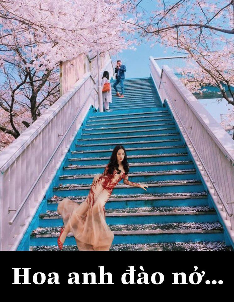 Có tâm như fan Chi Pu: Biết idol không có thời gian du lịch liền giúp chị nhà có ảnh sống ảo chất hơn nước cất-12