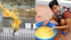 Thêm một Youtuber gây phẫn nộ khi đổ cả thau trứng sống 400 quả vào đầu người đi đường