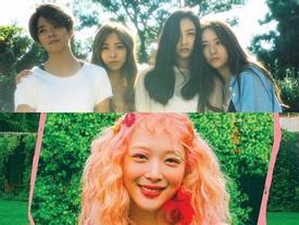SM có bất công hay không khi cho Sulli debut solo, trong khi f(x) đã 3 năm rồi vẫn chưa comeback?
