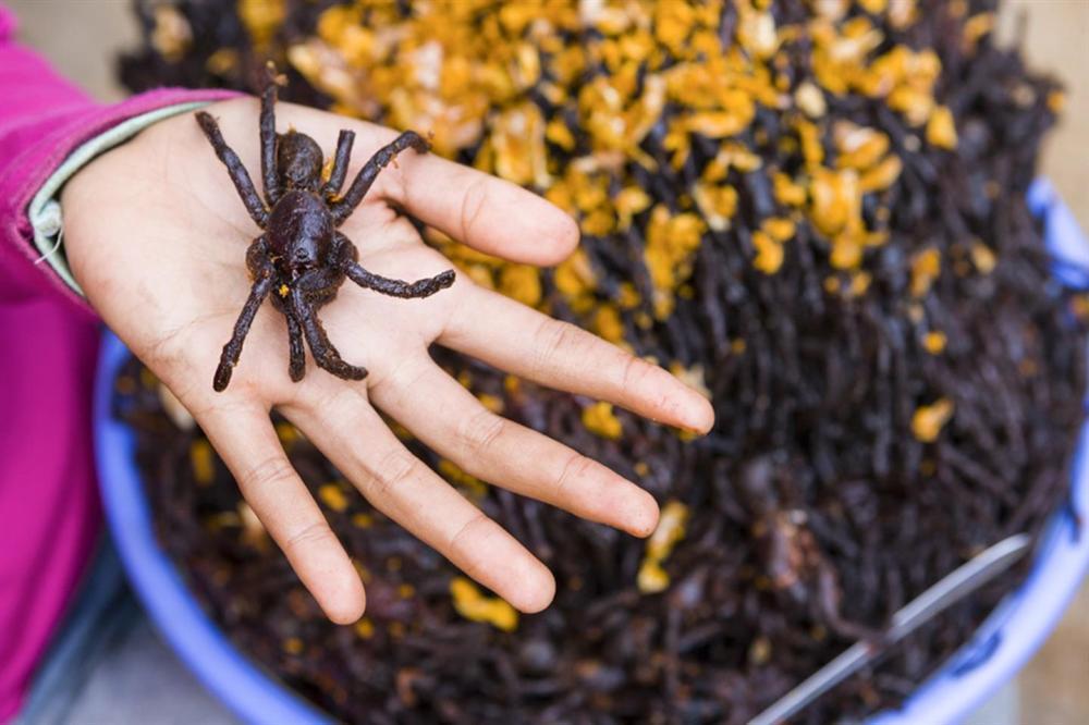 Nhện độc, bọ cạp và những món ăn nên thử khi đến Campuchia-1