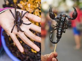Nhện độc, bọ cạp và những món ăn nên thử khi đến Campuchia