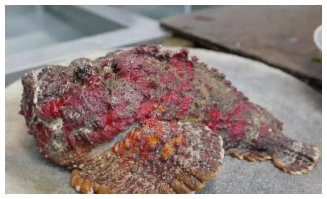 Loài cá cực độc được các đầu bếp Trung Quốc chế biến thành món cực phẩm-2