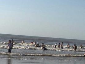 2 du khách chết đuối và mất tích khi đi tắm biển lúc sáng sớm ở Thanh Hóa