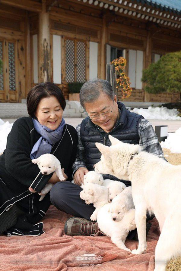 Đợi bạn trai đi tù 2 năm, cô gái không ngờ 40 năm sau thành đệ nhất phu nhân Hàn Quốc-6