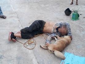 Bị phát hiện trộm chó, xông vào đánh chủ nhà toác đầu ở Hà Tĩnh