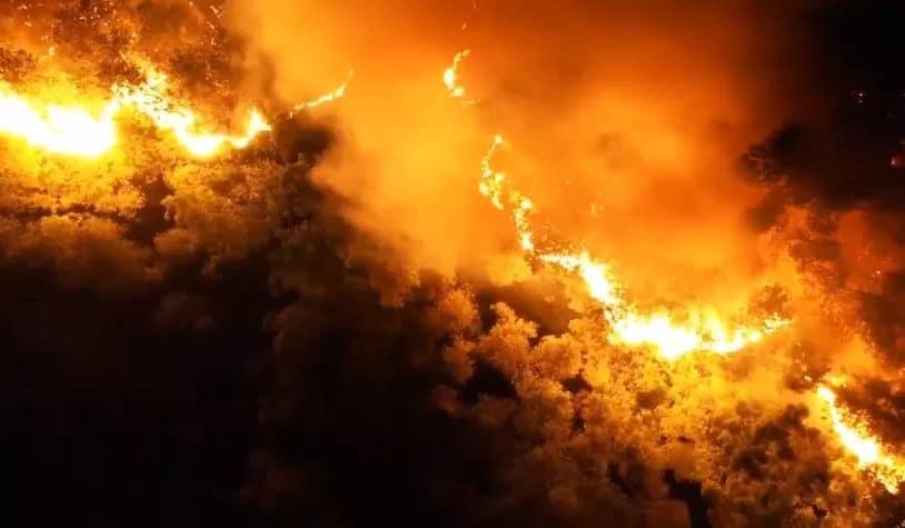 Clip: Cháy rừng chưa từng có ở Hà Tĩnh, nguy cơ ngắt đôi điện Bắc - Trung - Nam-5