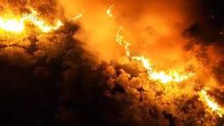 Clip: Cháy rừng chưa từng có ở Hà Tĩnh, nguy cơ ngắt đôi điện Bắc - Trung - Nam
