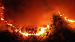 EVN: Cháy rừng ở miền Trung không làm ảnh hưởng đến đường dây 500 kV