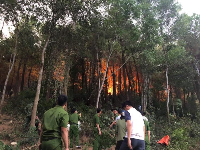 Cháy rừng thông, hơn 1000 người dập lửa : Bất ngờ tạm giữ một nghi can-2
