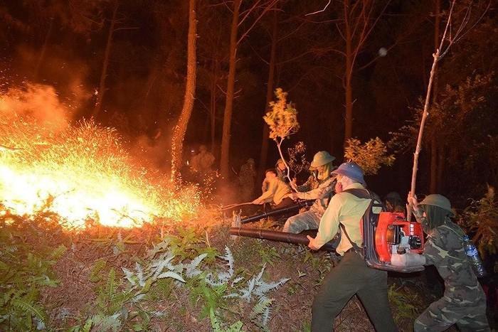 Cháy rừng thông, hơn 1000 người dập lửa : Bất ngờ tạm giữ một nghi can-1