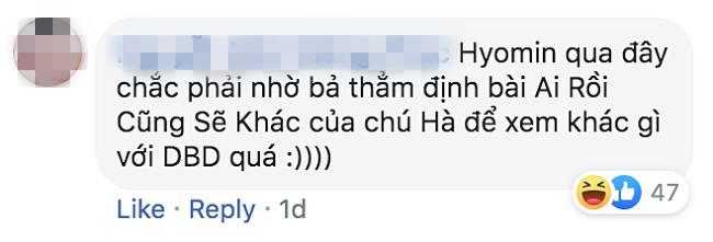 Vì sao nữ thần Hyomin (T-ara) sang Việt Nam nhưng Quang Hà lại được réo tên đề nghị diễn cùng?-5