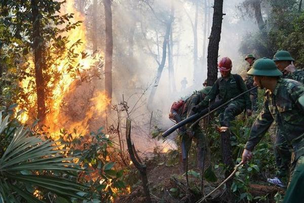 Hé lộ lời khai của nghi phạm gây cháy rừng khủng khiếp ở Hà Tĩnh-1
