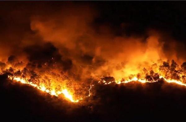 Hé lộ lời khai của nghi phạm gây cháy rừng khủng khiếp ở Hà Tĩnh-2