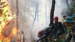 Hé lộ lời khai của nghi phạm gây cháy rừng khủng khiếp ở Hà Tĩnh