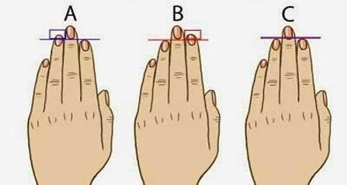 So sánh độ dài ngón tay áp út với ngón trỏ, biết ngay ai làm thuê, ai có tướng làm lãnh đạo-1