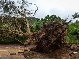Bão số 2 suy yếu thành áp thấp nhiệt đới, mưa giảm dần