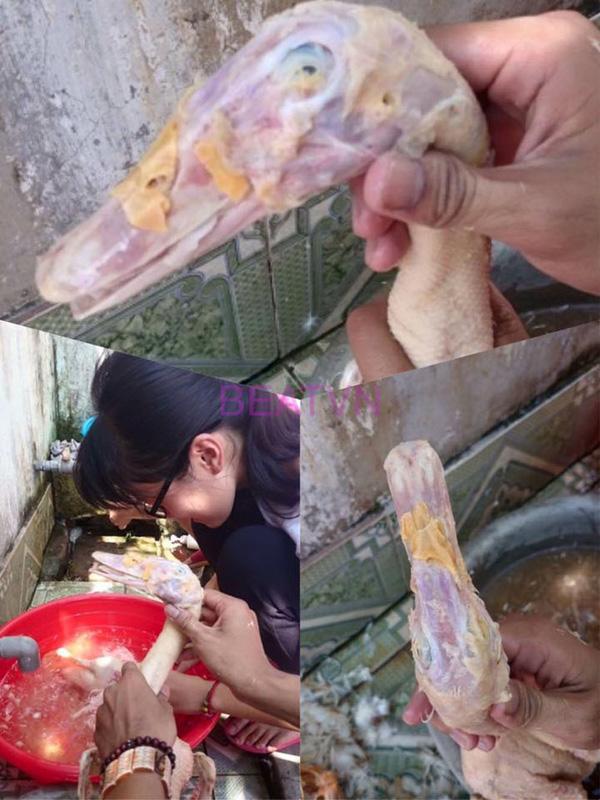 Những pha vặt lông gà lông vịt vụng nhất Vịnh Bắc Bộ khiến dân mạng lắc đầu ngao ngán-3