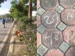 Danh tính tài xế taxi tông nữ lao công tử vong ở Long Biên rồi bỏ chạy
