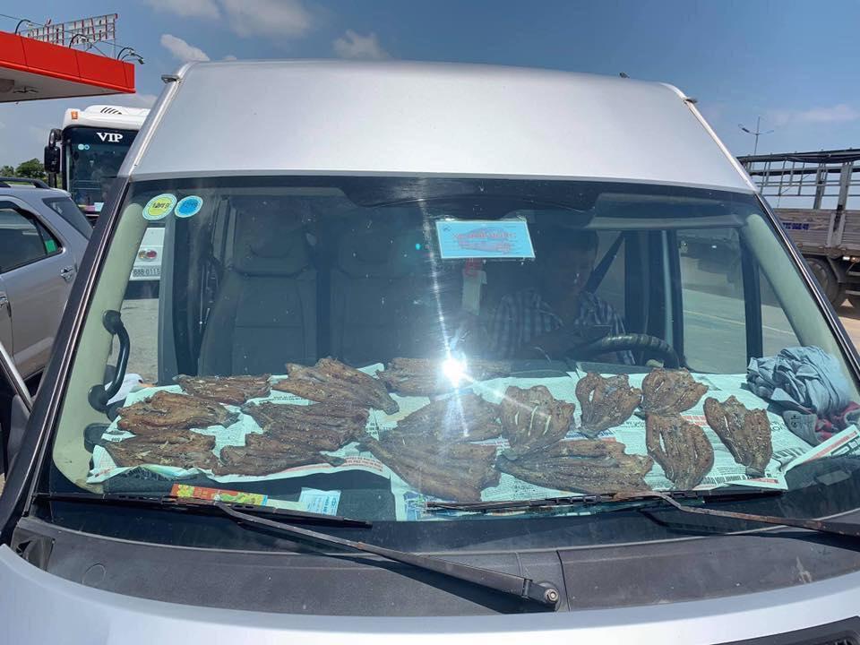 Thánh lầy nhất mạng xã hội,  phơi cá ngay trong ô tô, vừa đi vừa hứng nắng, ai xem cũng ngao ngán-1