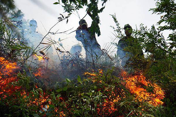 Rừng ở Đà Nẵng bốc cháy dữ dội, hơn 100 người tham gia dập lửa-2