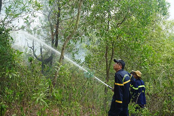 Rừng ở Đà Nẵng bốc cháy dữ dội, hơn 100 người tham gia dập lửa-4