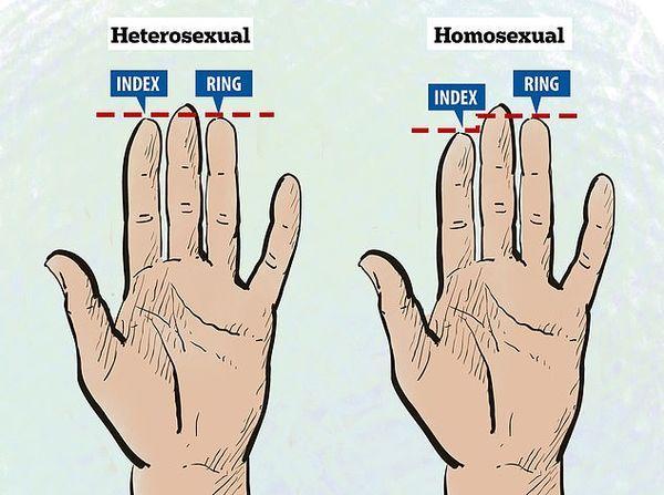 Xem ngón tay áp út của đàn ông, biết ngay người đó khỏe hay yếu, chung thủy hay lăng nhăng-2