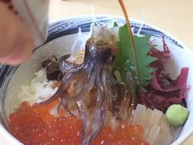 Món mực 'nhảy múa' trên bàn khiến thực khách khiếp sợ ở Nhật