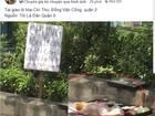 Dân mạng tranh cãi kịch liệt tấm biển thông báo 'chỉ lấy tiền chứ không xin ăn' nhưng gây sốc nhất là thức ăn thừa vương vãi trên đường
