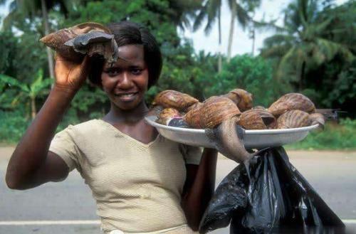 Loài vật này khiến mọi quốc gia kinh hãi nhưng người châu Phi lại nghiện ăn-3