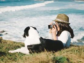 Giới trẻ Hàn chi mạnh, không tiếc tiền đưa thú cưng đi du lịch