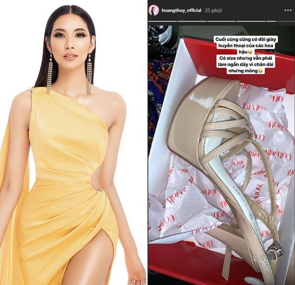 Bản tin Hoa hậu Hoàn vũ 31/7: Bóc tem giày cao gót huyền thoại Hoàng Thùy vừa tậu để so tài đối thủ quốc tế-1