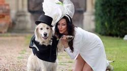Những đám cưới kỳ lạ khiến ai cũng giật mình ngã ngửa khi biết lý do thực sự