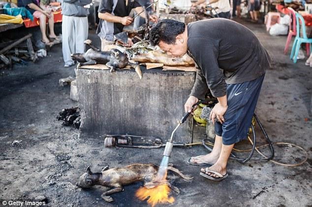 Những món ăn đáng sợ bán đầy ở chợ Indonesia khiến thực khách hết hồn-3