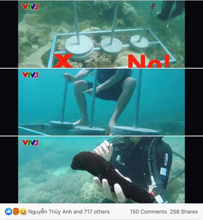 Cựu quán quân Cuộc đua kỳ thú Ngọc Anh tố êkip chương trình phá hoại môi trường biển khi quay hình-3