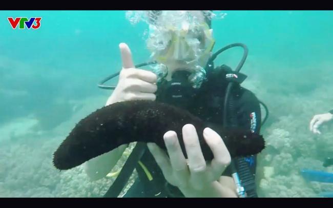 Cựu quán quân Cuộc đua kỳ thú Ngọc Anh tố êkip chương trình phá hoại môi trường biển khi quay hình-7