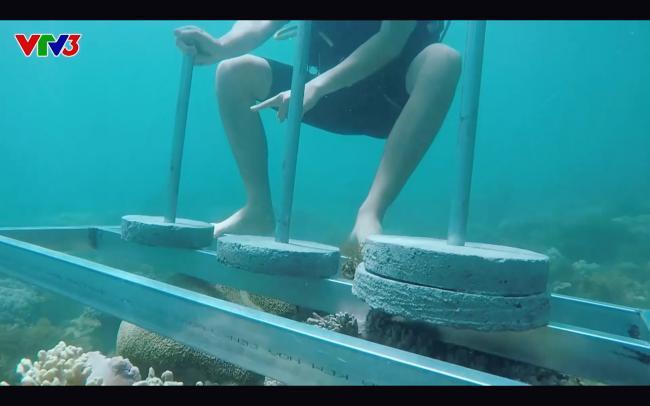 Cựu quán quân Cuộc đua kỳ thú Ngọc Anh tố êkip chương trình phá hoại môi trường biển khi quay hình-5