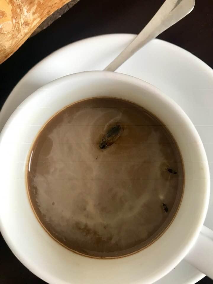 Góp ý phòng khách sạn bọ bò khắp nơi, Thảo Vân nhận được lời dặn ngược bất ngờ từ nhân viên dọn dẹp-2